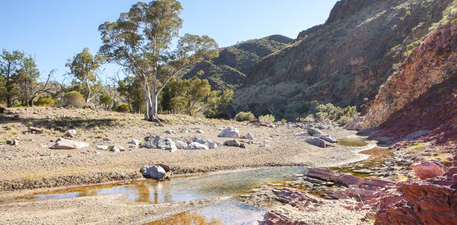 Australian Landscape, Flinders Ranges