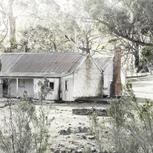 Lonely Home in the Bush