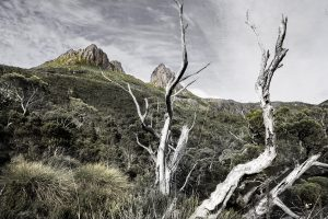 Cradle Mountain with storm clouds